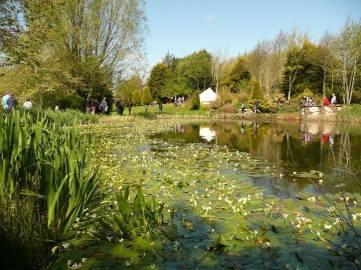 Hilton Court Gardens, 6 miles from Mountain Farm http://www.hiltoncourt.co.uk/